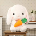 Offering without online payment: Cute bunny